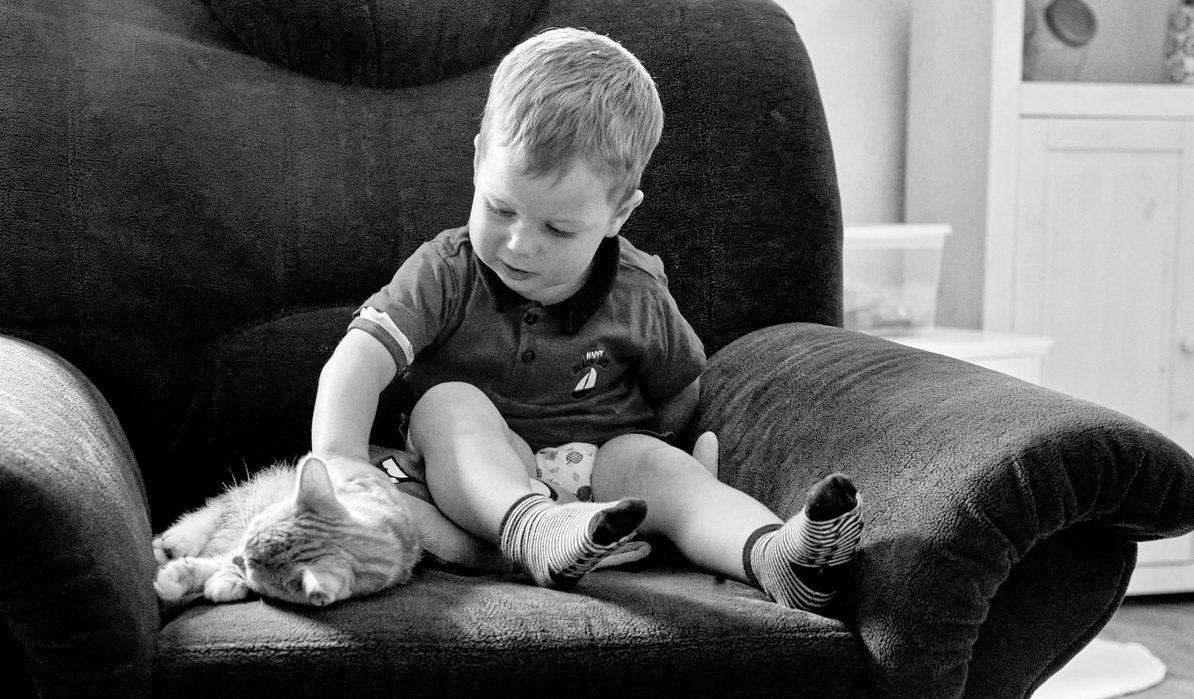 ungestellte kinderfotos hamburg, junge mit Katze